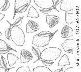decorative seamless pattern... | Shutterstock .eps vector #1075657802
