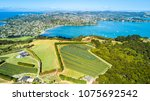 Aerial View On A Vineyard On...