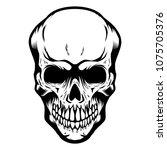 skull isolated on white... | Shutterstock .eps vector #1075705376