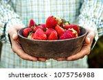 fresh fruit. farmer with bowl... | Shutterstock . vector #1075756988