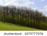 landscape in the spring | Shutterstock . vector #1075777076