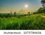 beautiful rural landscape of... | Shutterstock . vector #1075784636