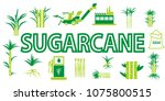 sugar cane icons vector.   Shutterstock .eps vector #1075800515