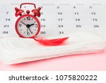 menstruation sanitary pad for... | Shutterstock . vector #1075820222