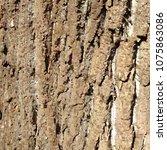 bark pattern background. relief ... | Shutterstock .eps vector #1075863086