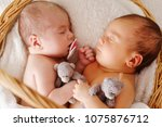 two sweet twins sleeping in the ... | Shutterstock . vector #1075876712