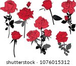 illustration with rose flowers... | Shutterstock .eps vector #1076015312