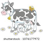 smiling spotted cow and her... | Shutterstock .eps vector #1076177972