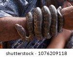 carretera cabeza de toro punta... | Shutterstock . vector #1076209118