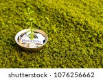 plant growing out of algeria...   Shutterstock . vector #1076256662