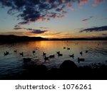 Lake at sunset. - stock photo
