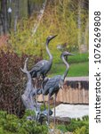Sculpture Of Two Herons In The...