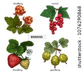 set of hand drawn berries... | Shutterstock .eps vector #1076290868