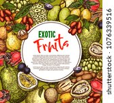 exotic fruits sketch poster of...   Shutterstock .eps vector #1076339516
