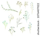 watercolor plants and twigs on... | Shutterstock . vector #1076407022