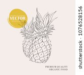 pineapple hand drawn... | Shutterstock .eps vector #1076528156