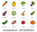 carrot  pepper  broccoli  beet  ... | Shutterstock .eps vector #1076560322