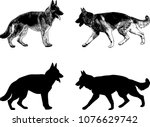 Stock vector german shepherd dog silhouette and sketch vector 1076629742