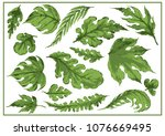 beautiful leaves  vector... | Shutterstock .eps vector #1076669495