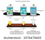 electrolyte and nonelectrolyte... | Shutterstock .eps vector #1076670602