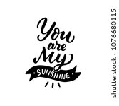 hand drawn lettering quote you... | Shutterstock .eps vector #1076680115