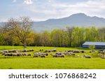 scenic spring rural landscape...   Shutterstock . vector #1076868242