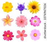 Flower Collection Isolated On...