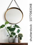 various plants standing on... | Shutterstock . vector #1077083348