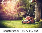 Mowing The Grass. The Gardener...