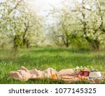plaid  juice with apples and a... | Shutterstock . vector #1077145325