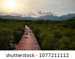 the old wooden walkway between... | Shutterstock . vector #1077211112