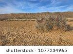 big bend national park | Shutterstock . vector #1077234965