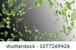 green flying leaves. vector... | Shutterstock .eps vector #1077269426