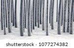 a microscopic closeup view of... | Shutterstock . vector #1077274382
