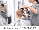 professional female hairdresser ... | Shutterstock . vector #1077289142