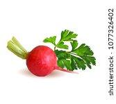 fresh  nutritious  tasty red... | Shutterstock .eps vector #1077326402