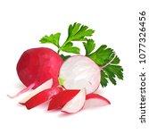 fresh  nutritious  tasty red...   Shutterstock .eps vector #1077326456