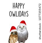 happy owlidays  with different... | Shutterstock . vector #1077355472