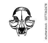 skull of a cat. cat silhouette. ... | Shutterstock .eps vector #1077362678