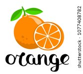 orange and a half with...   Shutterstock .eps vector #1077408782