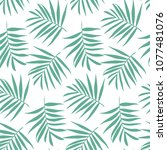vector palm frond. tropical... | Shutterstock .eps vector #1077481076