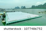 Green Floating Soccer Football...