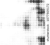 spotted monochrome vector... | Shutterstock .eps vector #1077505172