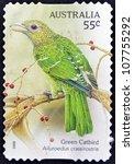 Small photo of AUSTRALIA - CIRCA 2009: A stamp printed in Australia shows Green Catbird, Ailuroedus crassiostis, circa 2009