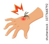 the mosquito bites the hand... | Shutterstock .eps vector #1077668792