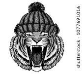 wild tiger cool animal wearing... | Shutterstock .eps vector #1077691016
