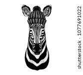 zebra horse cool animal wearing ... | Shutterstock .eps vector #1077691022
