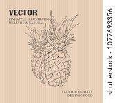 pineapple hand drawn... | Shutterstock .eps vector #1077693356