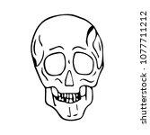 skull vector illustration. | Shutterstock .eps vector #1077711212