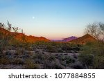 sun setting over the sonora... | Shutterstock . vector #1077884855